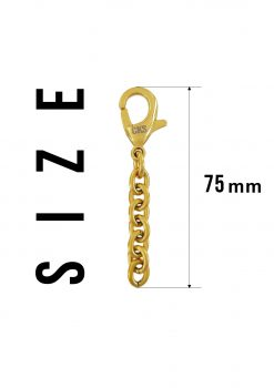 mini golden keychain