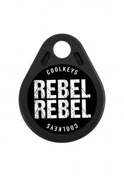 cool rfid keys